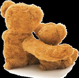 Bears side angle